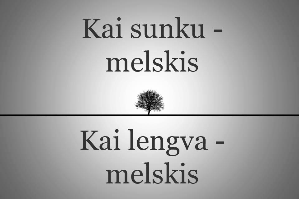 kai-sunku-melskis