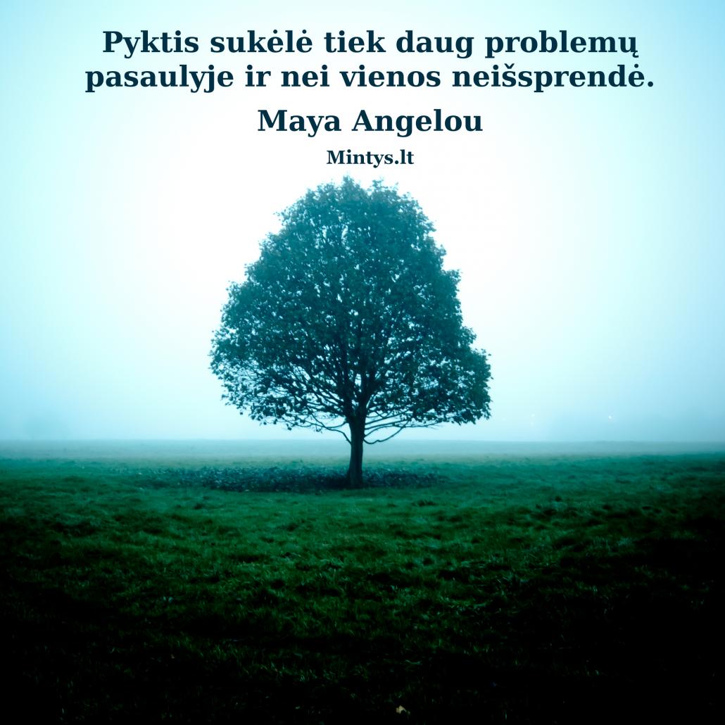 Pyktis neišprendžia problemų.