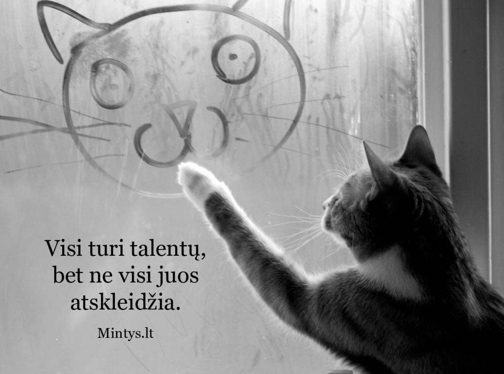 Visi turi talentų