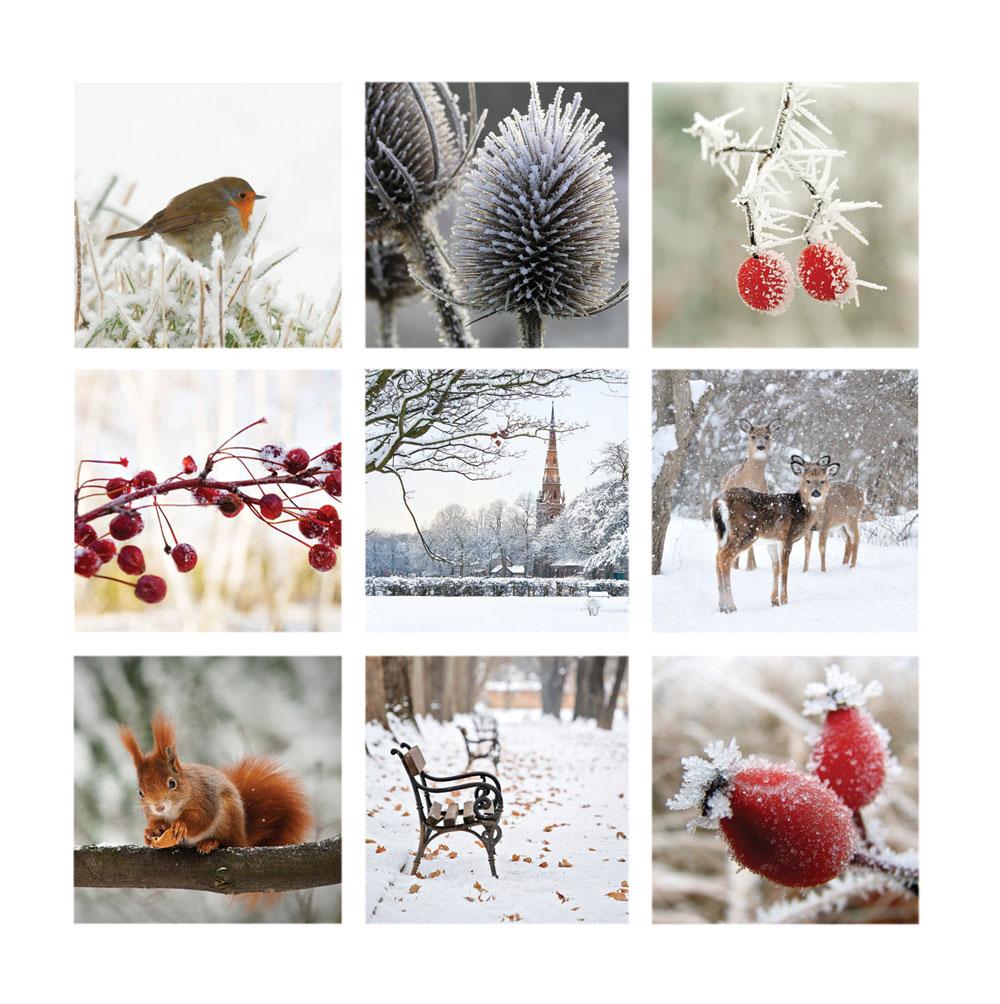 Žiemos koliažas